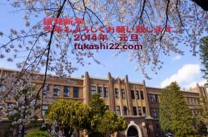 謹賀新年fukashi22
